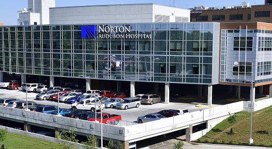 Norton Healthcare is seeking a System Vice President to serve the Norton Heart and Vascular Institute. Learn more or apply within!